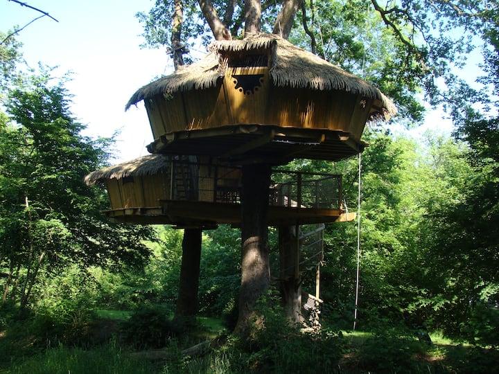 Cabane Héronnière pour 6 personnes