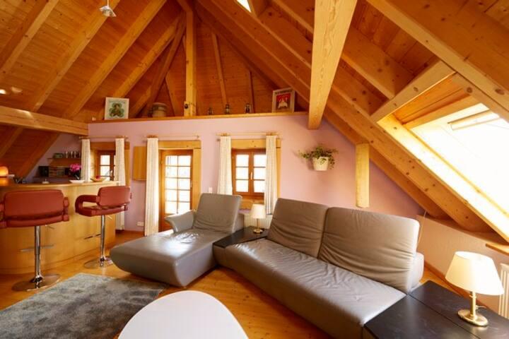 Villa Grenzenlos, (Löffingen), Haushälfte mit Saunabenutzung, 285qm, Wintergarten, 2 Schlafzimmer, max. 8 Personen