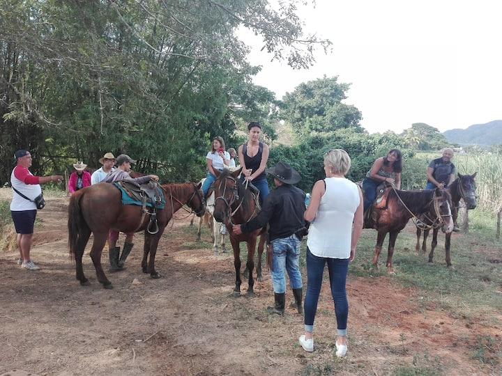 Montando a los turistas a caballo