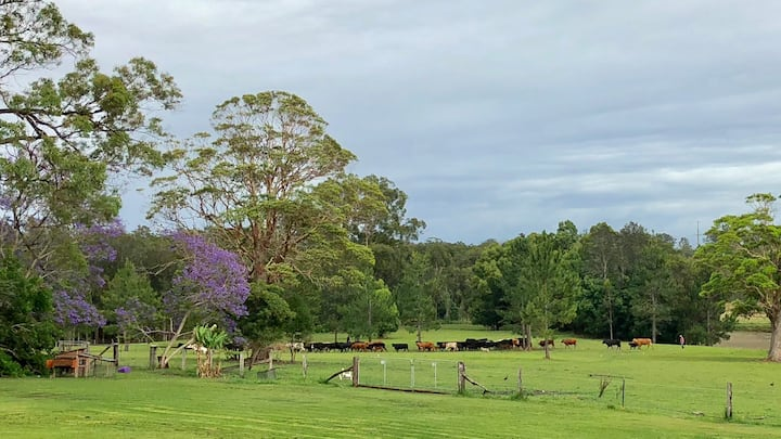 Mid North Coast Tranquil Farm/ Golf Stay