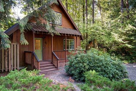 River White House-on Sandy River-Hot Tub-Wifi - Rhododendron - Rumah