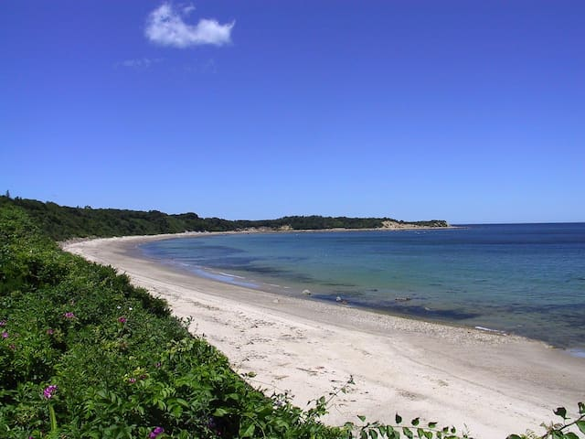 Charming Cape/Private beach access - Plymouth - Huis