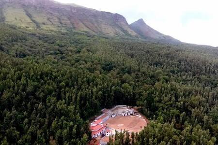 """Baarbara estate camp 2""- Admist the coffee farm"