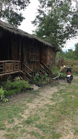 mcoy bamboo house