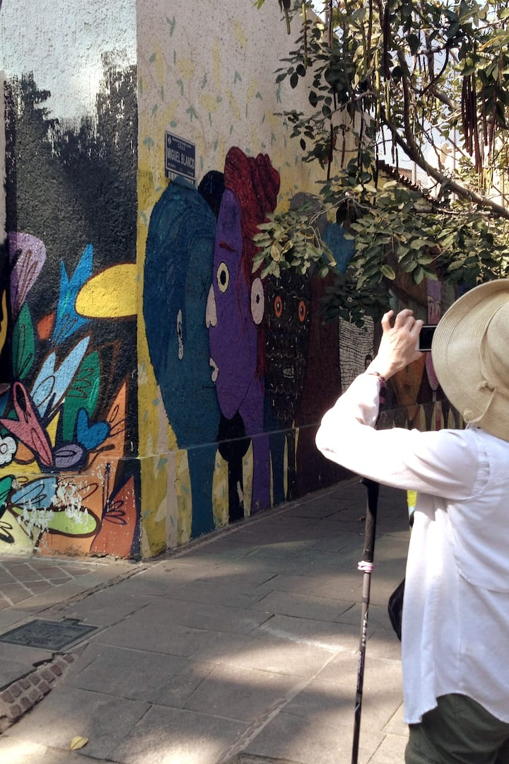 documenting the street art