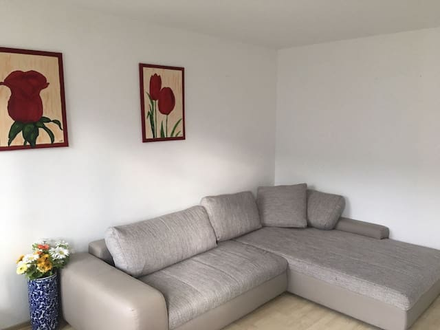 Single room in shared apartment  in Wolfsburg