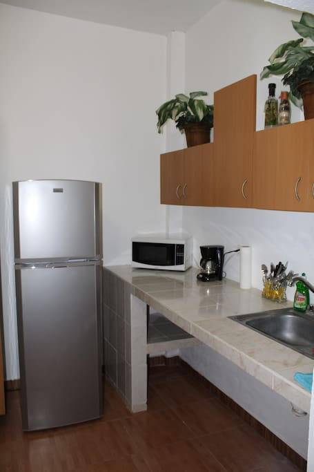 Kitchen area with all basic needs.
