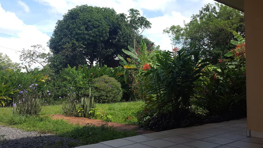New Private Home, 300 yards from the Central Park! - La Fortuna - House