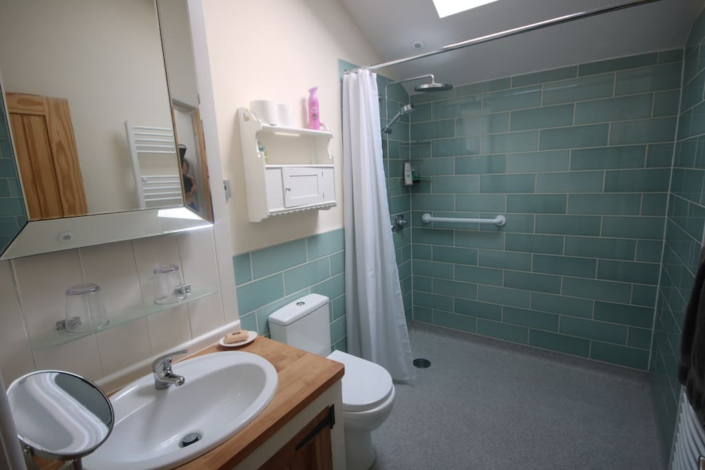 Spacious wet room adapted for wheelchair access