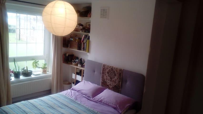 Lovely double room in Brockley - London - Apartemen
