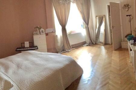 Charming 1 BDR flat - Victory Square - downtown - București - Apartament