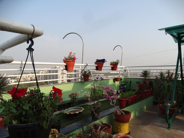 *****Luxuria-Terrace garden Homestay...!!! - Ahmedabad - Apartment