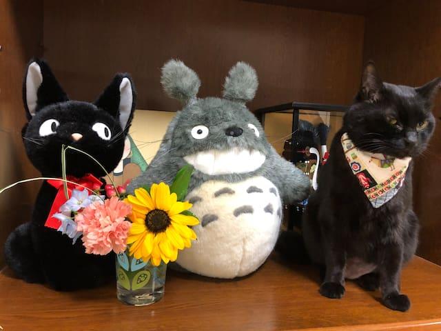 SHINJUKU, JAPANESE FAMILY!!