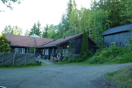 Idyllisk eiendom nær sentrum - Lillehammer - Hus