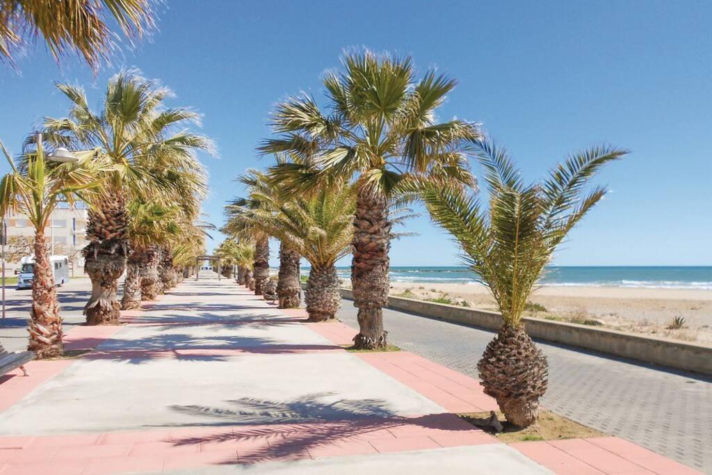 Paseo marítimo / seaside promenade