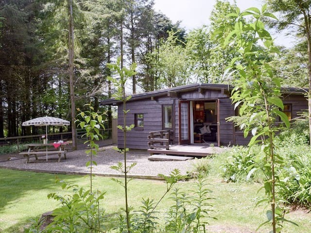 Grassholm Log Cabin. In a woodland setting