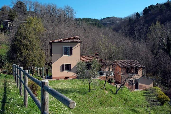 Chiesetta: intimate villa in the hills of Barga - Barga - Villa