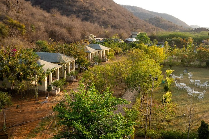 Beyond Stay Jungle Camp Sariska