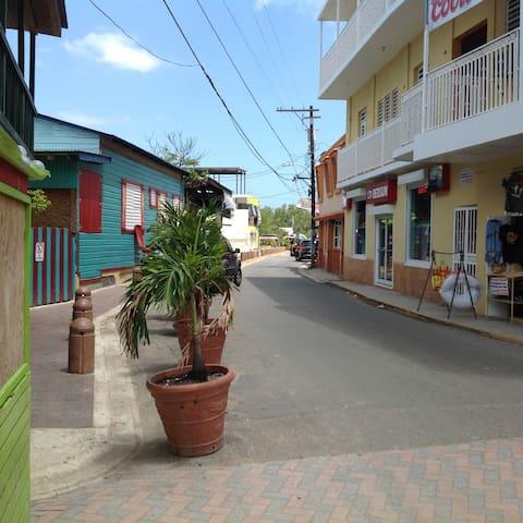 Guanina 9 villa, WiFi, screens, 24/7 security - Cabo Rojo - Villa