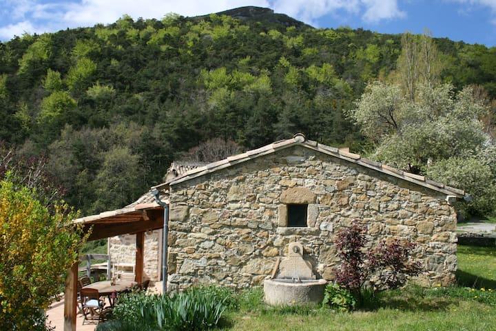 Maison de campagne atypique - Rhône-Alpes - Huis