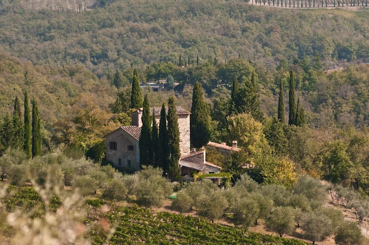 Villa with pool in the heart of Chianti
