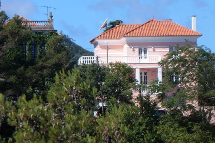 Vintage Art Deco B&B with pool - Sintra - Bed & Breakfast