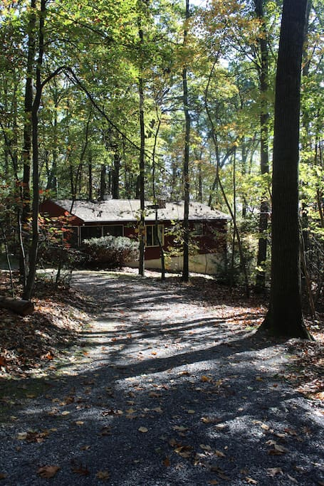 Jewel of a Cabin is beautiful all year but especially in the fall.