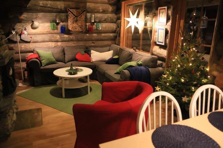 The Berrystay cosy log cabin Ylläs Lapland Finland