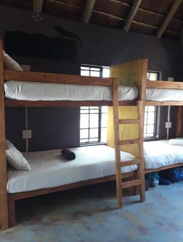 Lion - Large family/group/dorm room, en-suite!