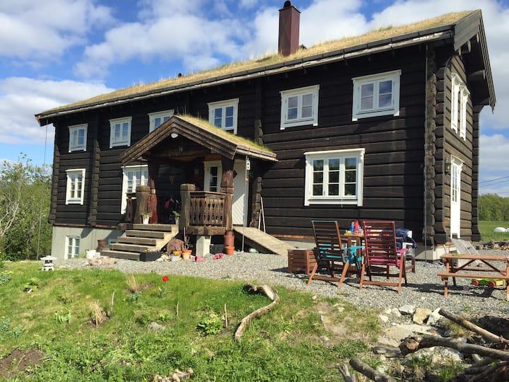 Hyggelig liten leilighet ved sjøen, nær sentrum.