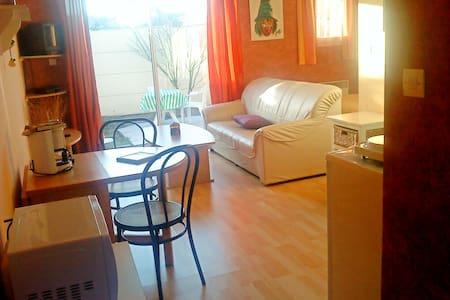 Beau studio 30 m2 avec terrasse sur jardin clos - Ludon-Médoc - 独立屋