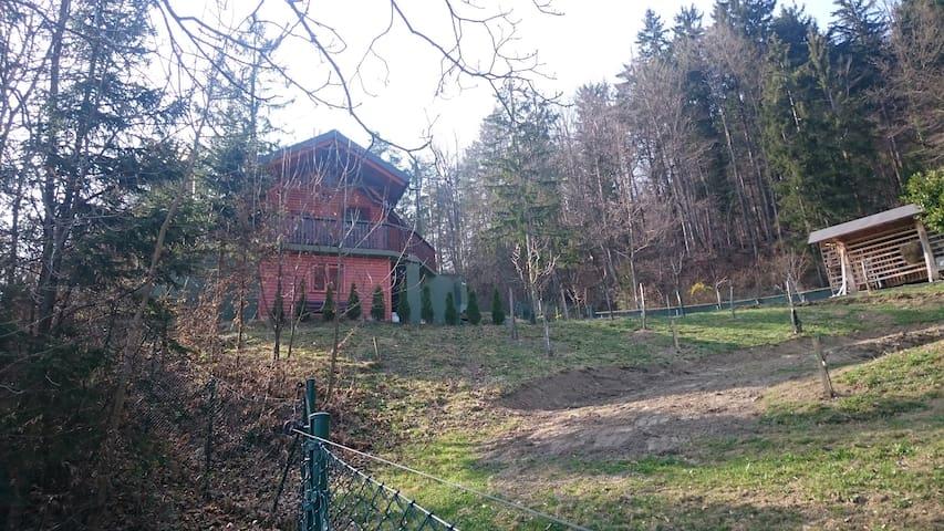 Forest Cabin - Rečica ob Savinji - Blockhütte