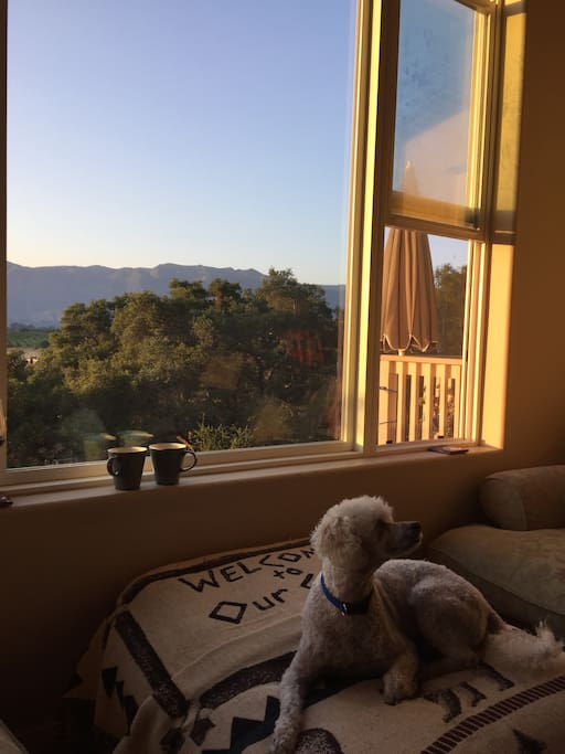 Expansive view for morning coffee