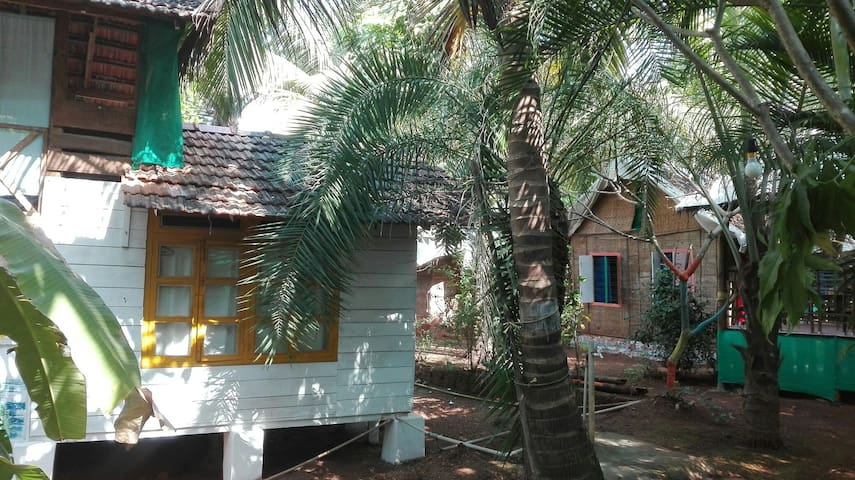Nice hut in exuberant garden - Morjim, Goa, IN - Casa