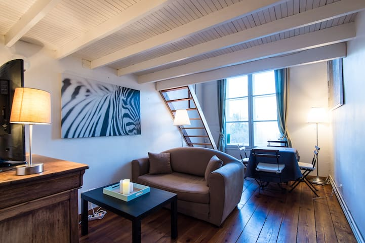 Appartement cocooning, Hyper centre proche gares - Lille - Huoneisto