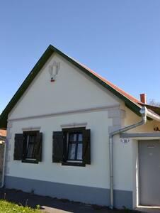 Kikapcsolódás felújított parasztházban Borgátán