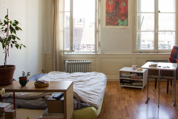 Large room close train station and city center - Strasbourg - Apartment