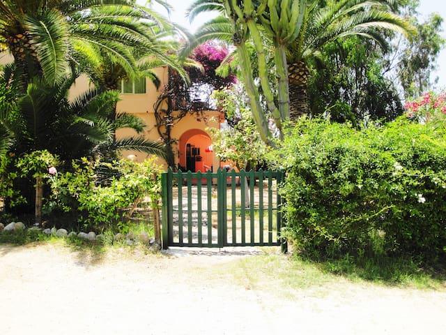 Casa delle palme con vista  sul mare