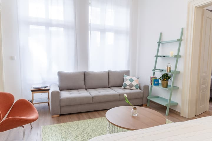 Apartment in hist. center of Prague with netflix