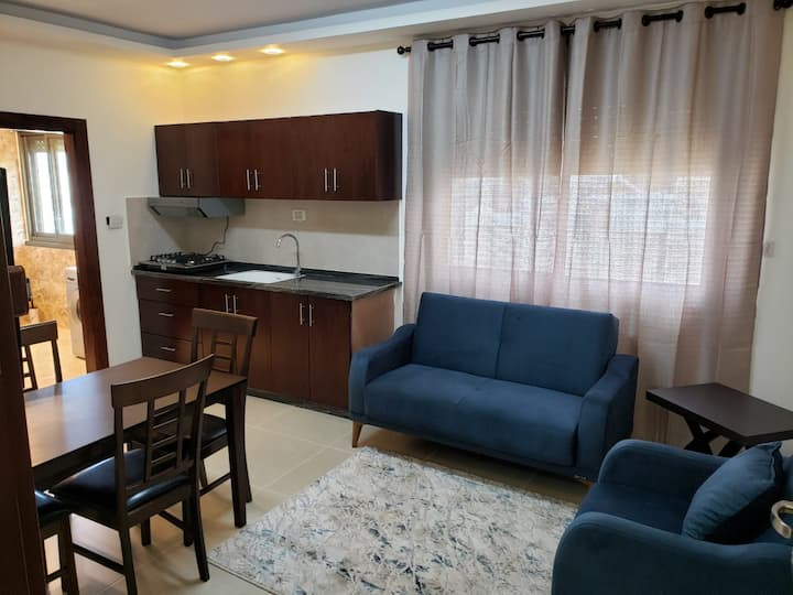 Luxury Apartment (City Center) #1