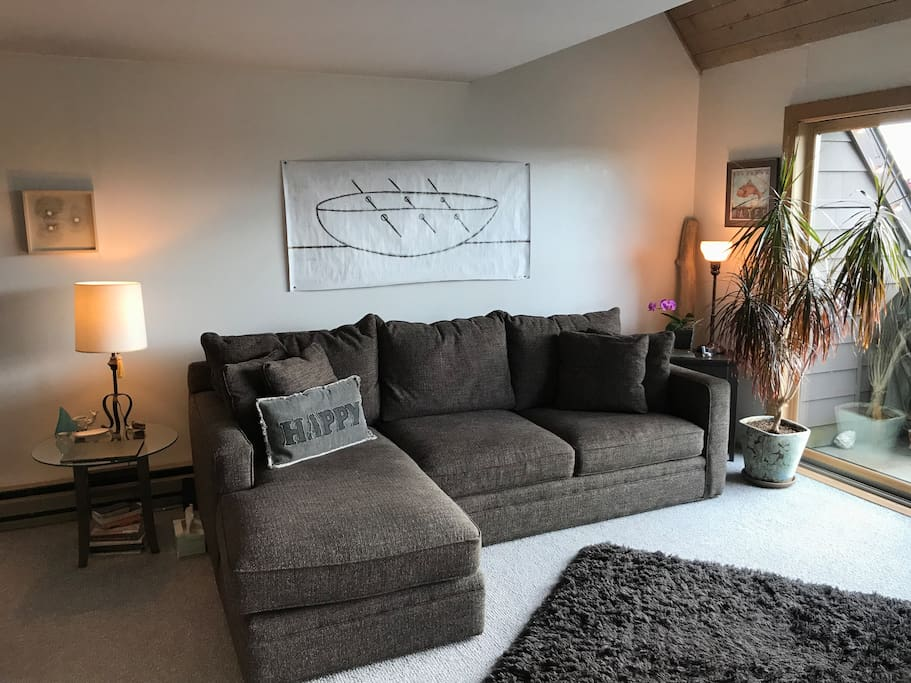 Enjoy our super comfy Room & Board couch with more than enough space for two!