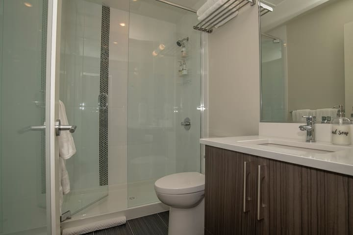 Large Shower and Quartz countertops