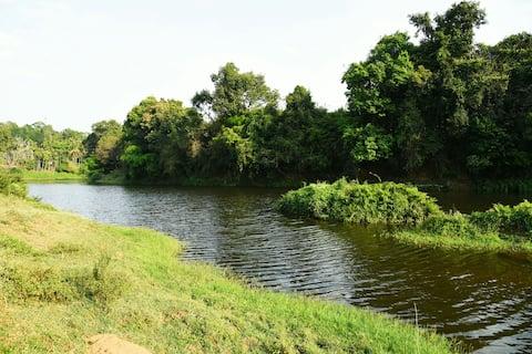 Vandudsigt ved Kabani Riverside