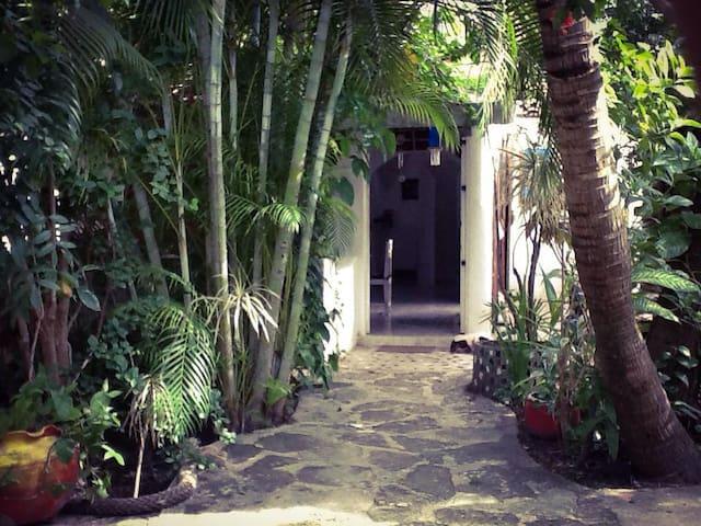 Ekolodge Ana María Cozumel Island - San Miguel de Cozumel - Multiproprietà