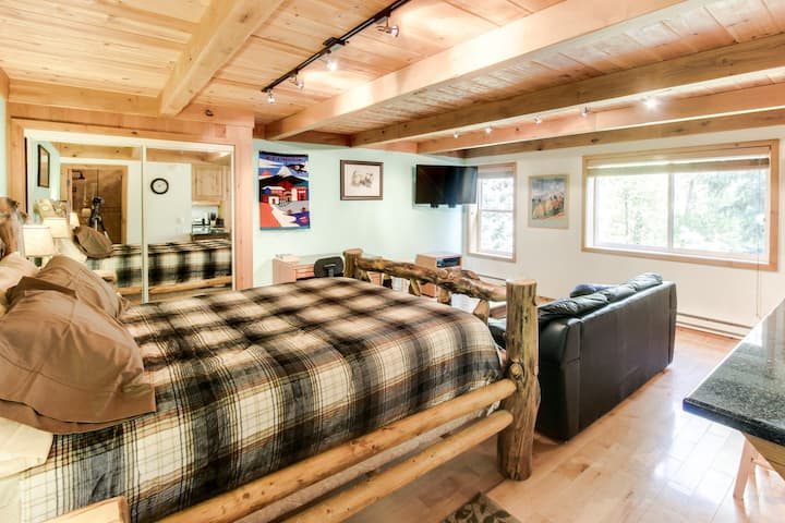 Gorgeous studio cabin w/ WiFi, cable, full kitchen, & easy ski access!