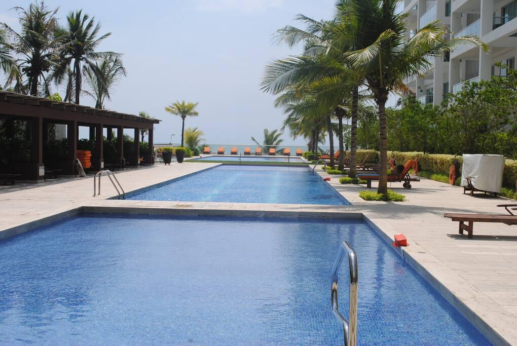 Pool area ( Direct beach access )