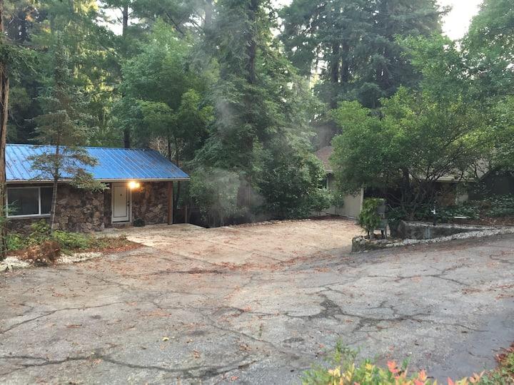 Redwood Getaway #1