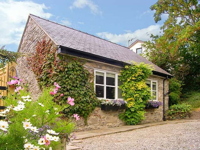 TAN Y BRYN, country holiday cottage in Gwaenysgor, Ref 924835