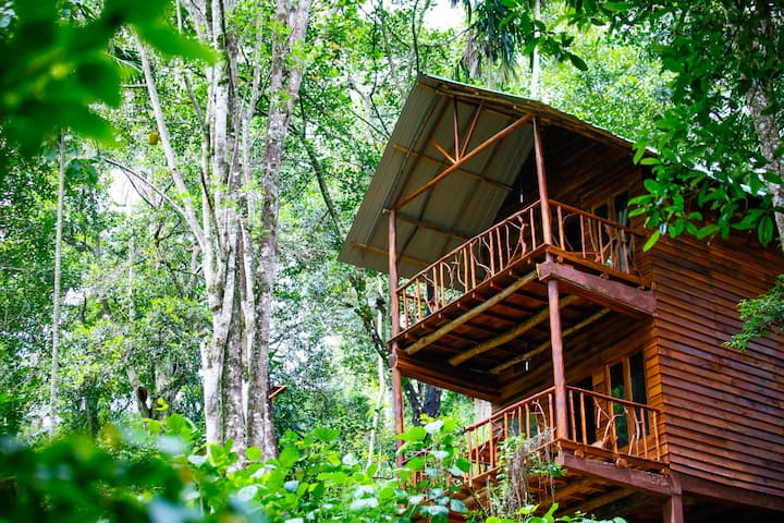 Tree house with mountain view