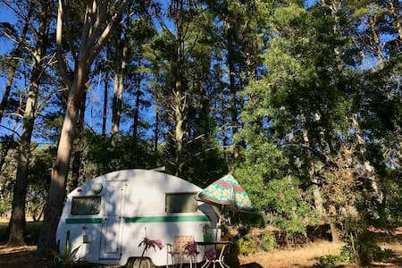 Tram and vintage caravan 5 minutes from Kyneton - Lauriston - Other - 2